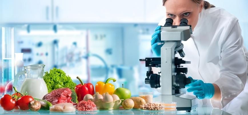 Food scientist observing different foods