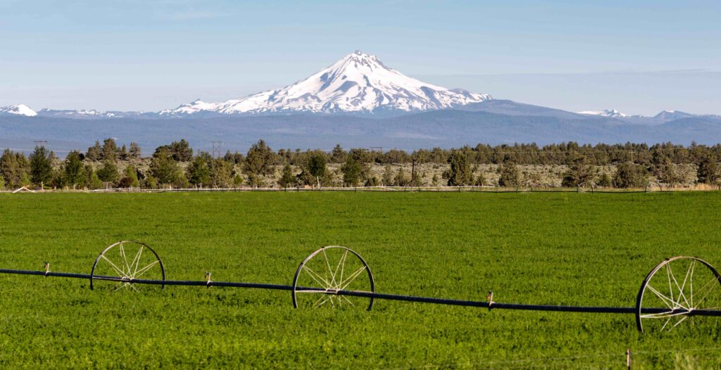 Mount Jefferson Viewed from the Warm Springs Reservation in Oregon